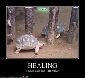 HEALING Healing takes time. LOL I tell ppl that I knew it would take ...