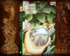 Hollow Book Safe (The Chronicles of Narnia - The Magician's Nephew ...