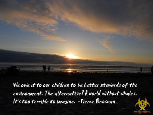 Pierce Brosnan quote