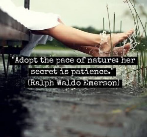 People who are impatient usually have difficulty resisting the need ...