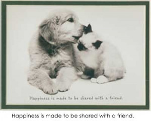 Happiness is made to be shared