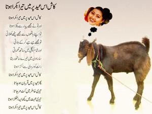 Funny Eid Mubarak Shayari Bakra Hota Tera Kat Jata
