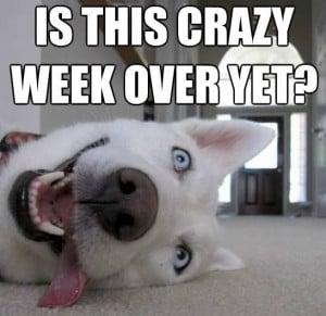 It's the weekend :)