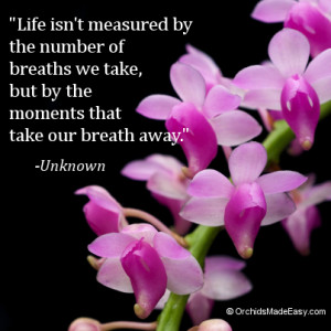 02-take-your-breath-away-300x300.png