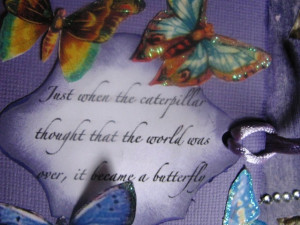 Quotes On Butterfly And Transformation
