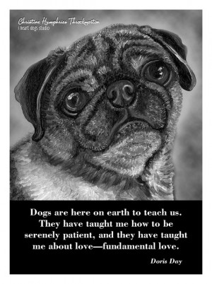 NEW Dog quote card: Pug by iheartdogsstudio