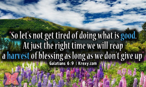 Bible Quotes – Don't Ever Give Up