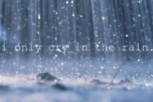cry, rain, sad, sorry, summer, text