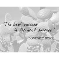 More of quotes gallery for Domenico Dolce's quotes