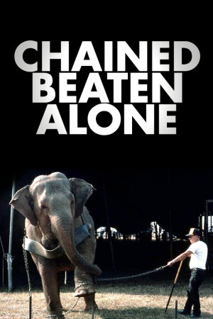 Image result for against animals in circuses