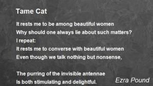 tame-cat.jpg