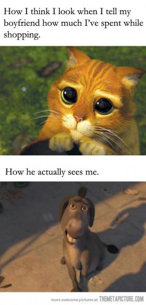 funny Shrek cat donkey look