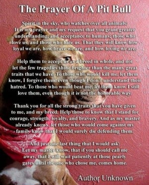 There are no prayers offered to inspire pit bull owners everywhere to ...