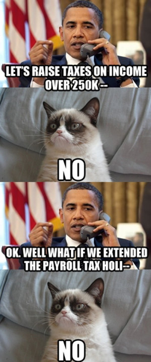 related pictures grumpy cat vs obama