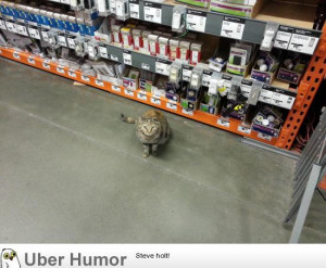 The best help I've ever found at The Home Depot.