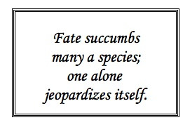 Rigorously challenge your inner status quo. #FameMentor