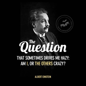 Quote by Albert Einstein~ The question that sometimes drives me hazy ...