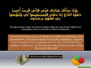 Holy Quran Verse.