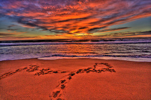 ... Portfolio › Footprints In The Sand - Newport Beach - The HDR Series