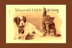 Cat Quotes regarding Cats and Dogs