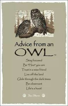 Wise owl quotes