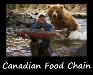 Funny Canadian Food Chain