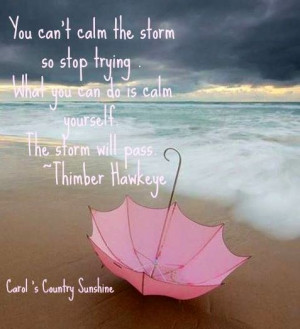Storm quote via Carol's Country Sunshine on Facebook