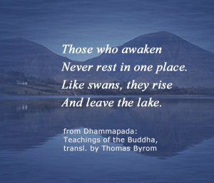 love quotes from the teachings of the Buddha. #meditation #Buddha # ...