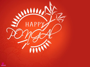 Happy Harvest Festival Celebration Pongal Happy Pongal Greetings and ...