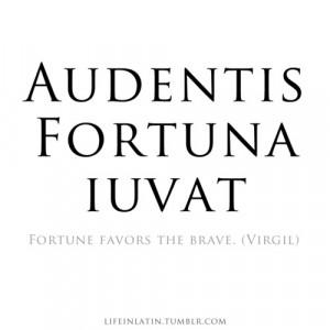 ... life in latin meme quote quotes typography cicero poet language brave