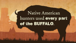 The Buffalo and Native Americans 2min