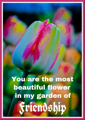 ... Most Beautiful Flower In My Garden Of Friendship - Friendship Quote