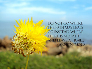 Do Not Go Where The Path May Lead, Go Instead Where There Is No Path ...