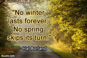 funny spring fever quotes no winter lasts forever no spring skips its ...