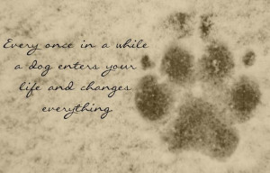 So true for me and my first dog Vader. He changed everything in the ...