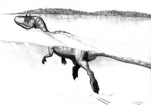 Tracks show dinosaurs were swimmers