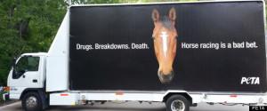 PETA Kentucky Derby Billboard Protests Horse Racing Drug Use, Draws ...