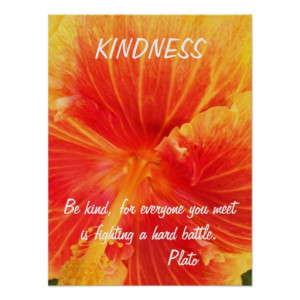 Kindness Inspirational Poster Quote Plato Hibiscus