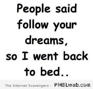 people-said-follow-your-dreams-funny-quote