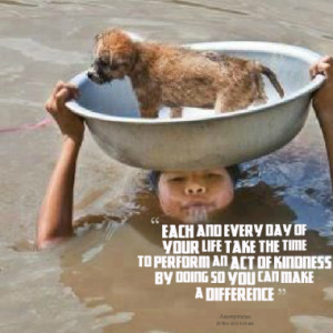 Quotes About: kindness animals rescue
