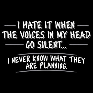 Hate It When The Voices In My Head Go Silent...I Never Know What ...