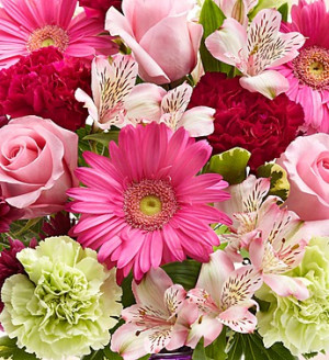 Inspirational Flower Quotes to Brighten Your Day