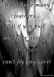 Angel Feather Quotes http://www.pic2fly.com/Angel+Feather+Quotes.html