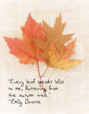 Fall Leaves Autumn Emily Bronte Quote FoilageTawny Brown Red Orange ...