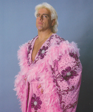281 WWE Jakks Classic Figures Signed