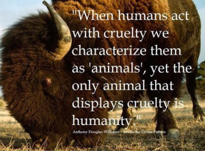 ... Yet The Only Animal That Displays Cruelty Is Humanty - Animal Quote