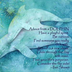 Advice from a Dolphin #dolphins http://www.victoriadortzbach.com