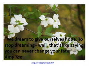 We dream to give ourselves hope. To stop dreaming - well, that's ...
