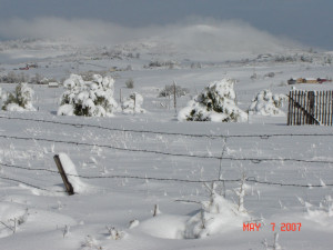 19169d1209917176-i-hate-weather-colorado_snow2_may_2007.jpg