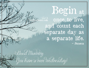 Begin at once to live, and count each separate day as a separate life.